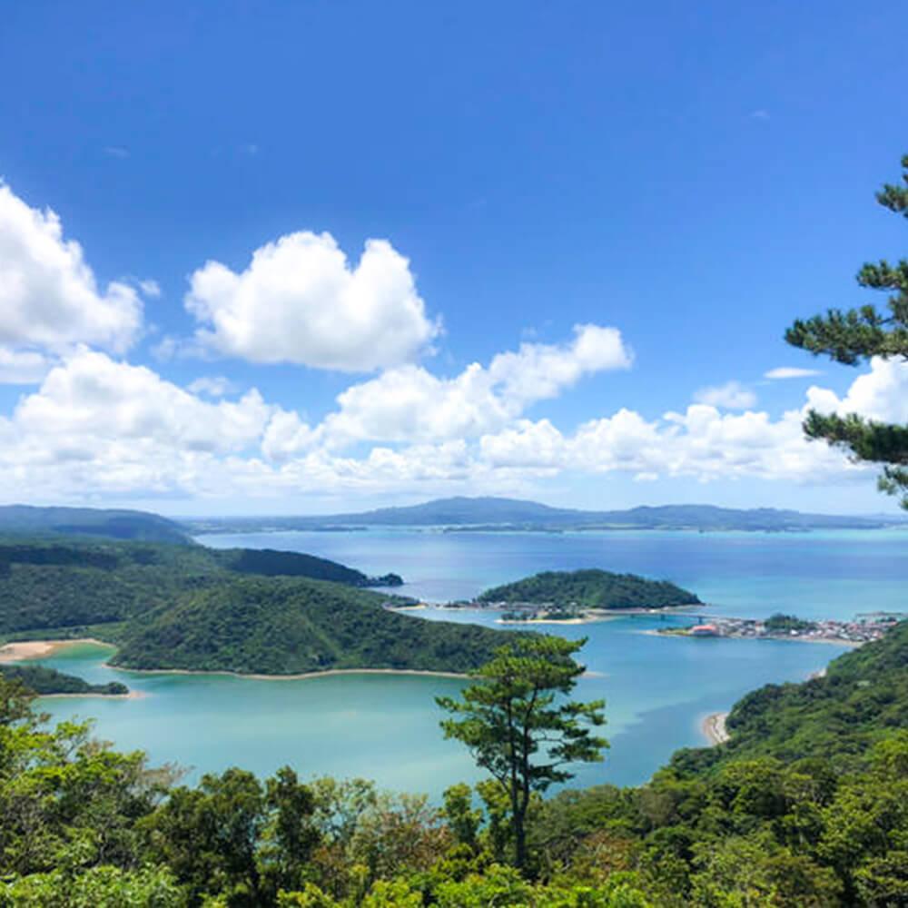 沖縄やんばるの風景