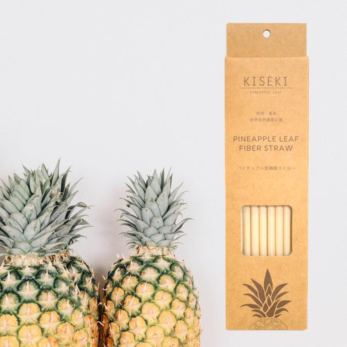 パイナップル繊維の布マスク/ストロー/キーホルダーセット