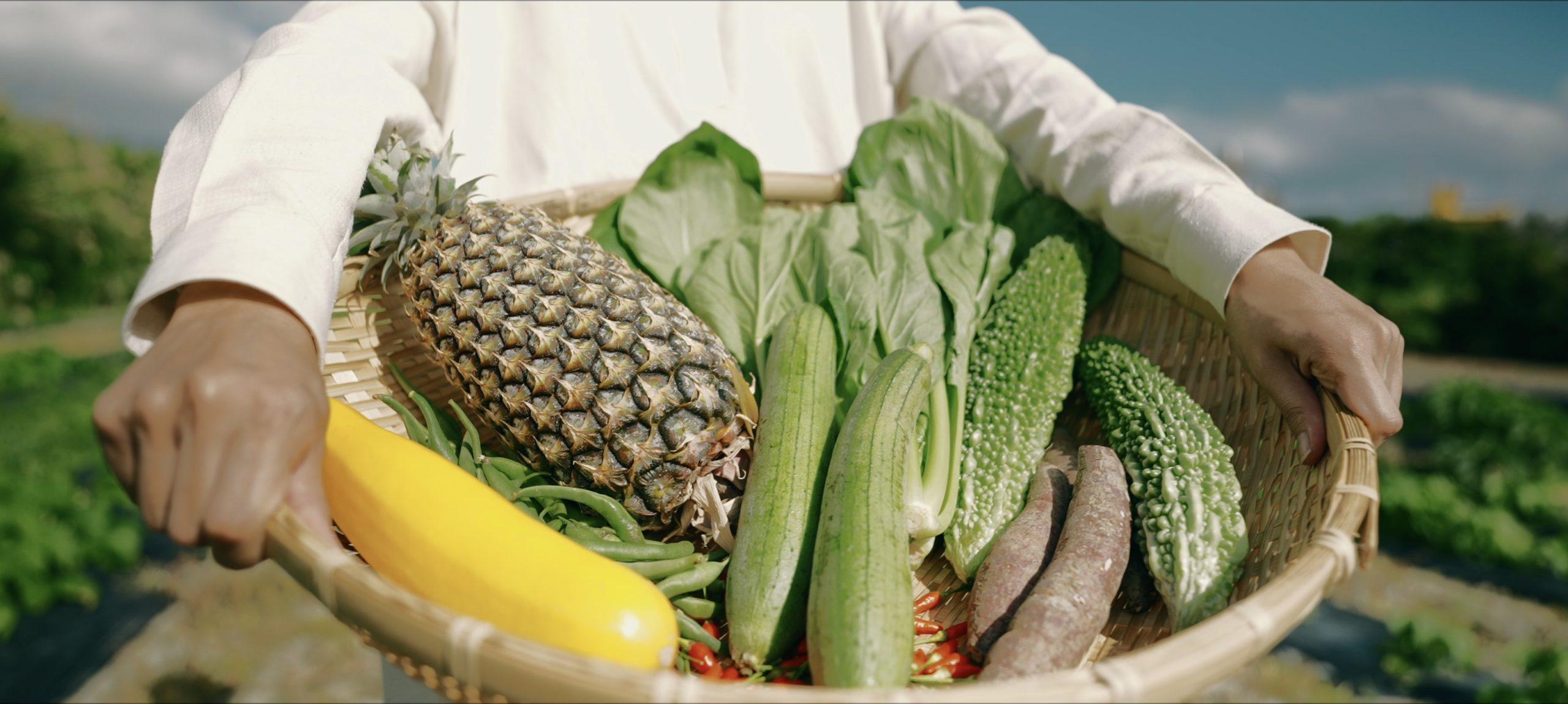 菌ちゃん先生「元気野菜作りと食育」講演会を開催します!